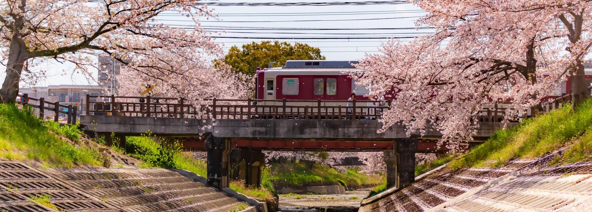 奈良県大和高田市の社労士事務所